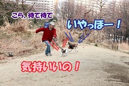 1_20120207233541.jpg
