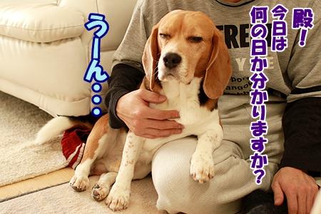 1_20120311205119.jpg