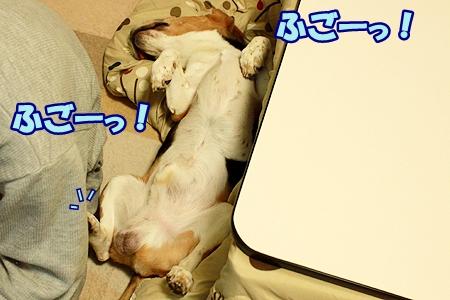 2_20111125232910.jpg
