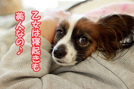 2_20120103230152.jpg