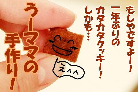 2_20120131233402.jpg
