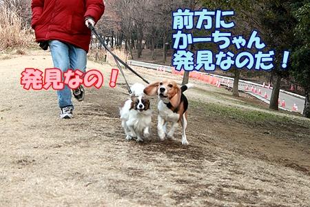 2_20120207233540.jpg