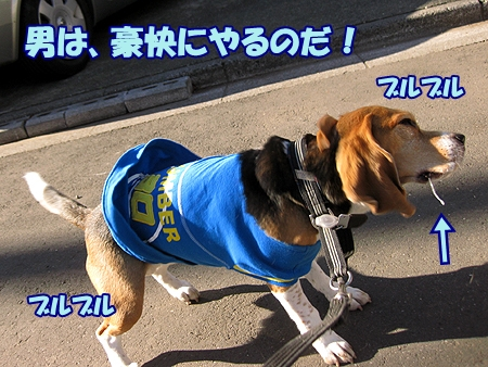 2_20120208235307.jpg
