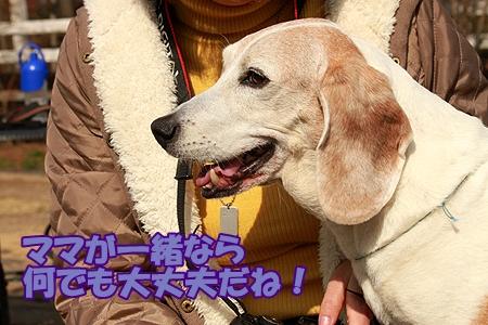 2_20120306211232.jpg