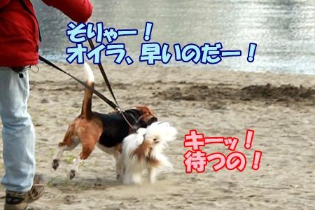 2_20120326232750.jpg