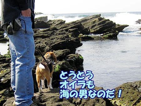 2_20120403233608.jpg