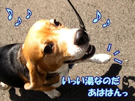2_20120405215457.jpg