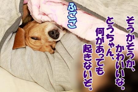 3_20120105202524.jpg