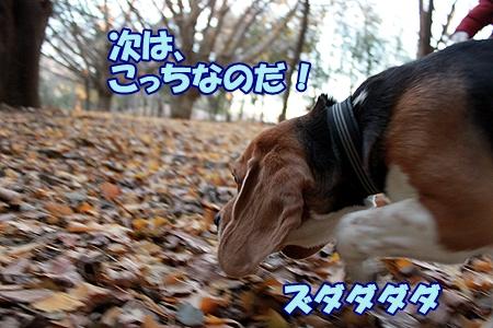 3_20120129223436.jpg