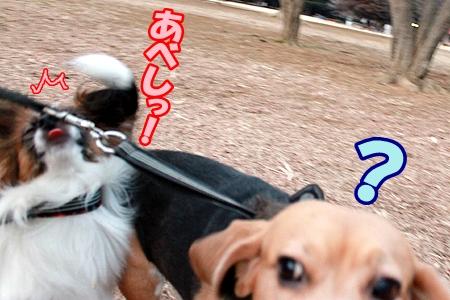 3_20120205231242.jpg