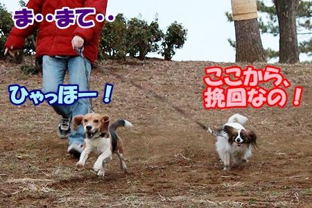3_20120216223654.jpg