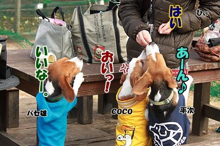 3_20120305230015.jpg