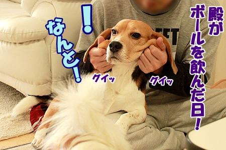 3_20120311205119.jpg