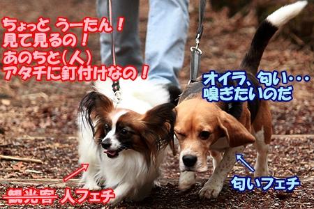 3_20120320220505.jpg