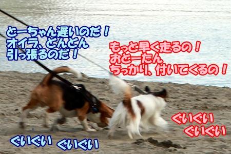 3_20120326232750.jpg