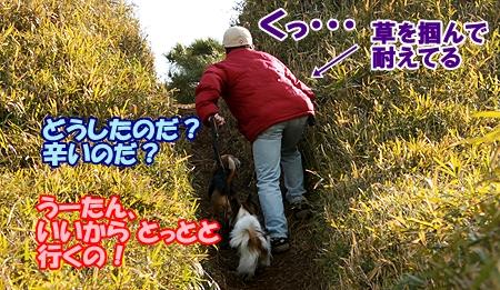 3_20120327234858.jpg
