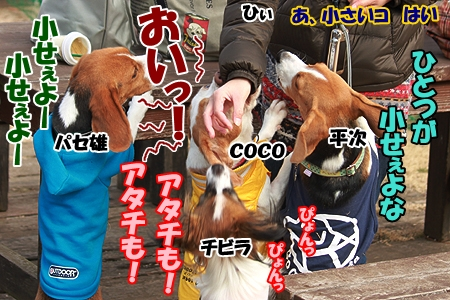 4_20120305230015.jpg