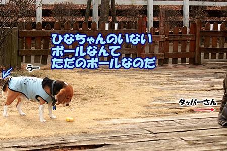 4_20120308230518.jpg