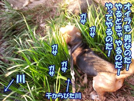 4_20120313230245.jpg