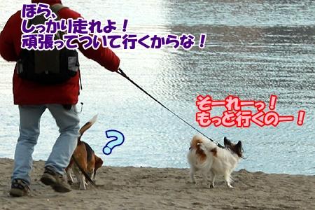 4_20120326232750.jpg