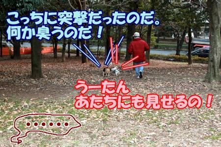 5_20120207233539.jpg