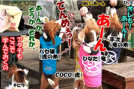 5_20120305230015.jpg