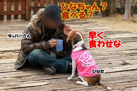 5_20120308230518.jpg