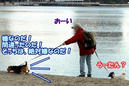 5_20120326232750.jpg