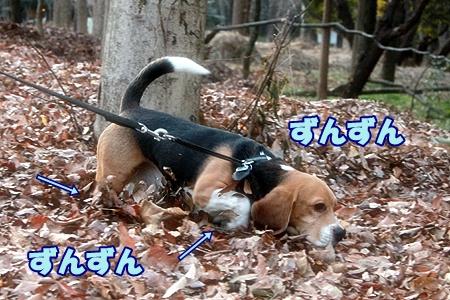 6_20120129223435.jpg