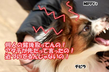 7_20120309233114.jpg