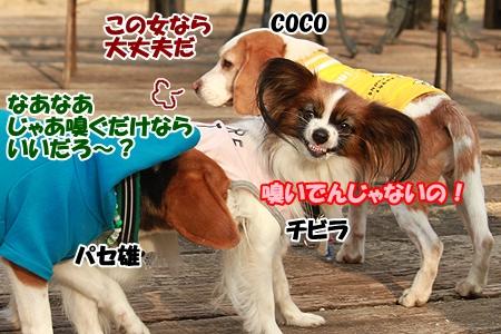 8_20120307222713.jpg