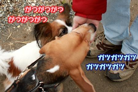 8_20120320220446.jpg