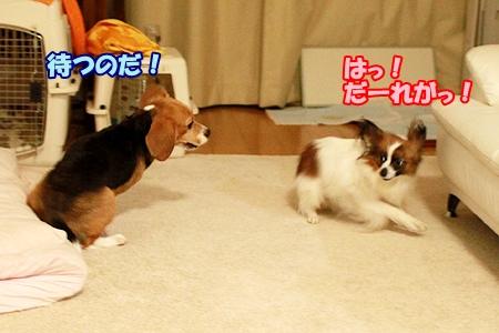 9_20120320220445.jpg