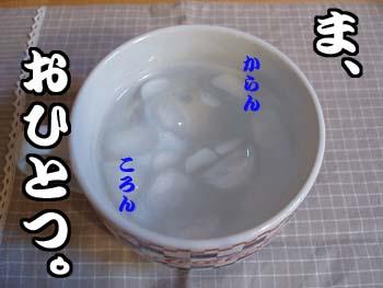 P6240083.jpg