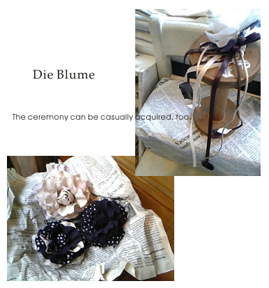 blume-blog.jpg