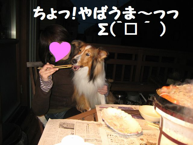 IMG_9690-1.jpg