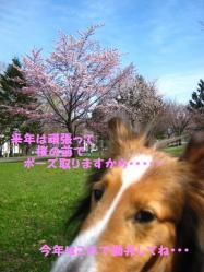 IMG_9748-1.jpg