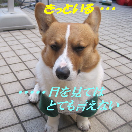 IMG_5137.jpg
