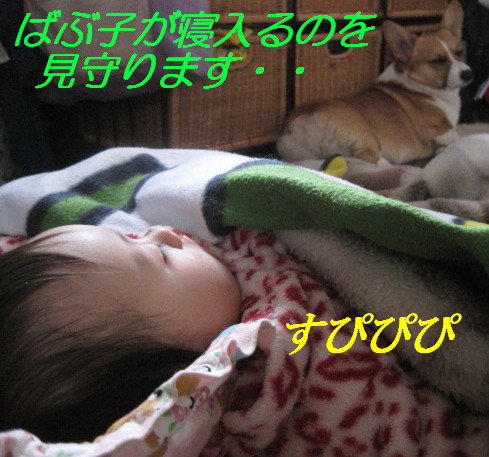 IMG_5228.jpg