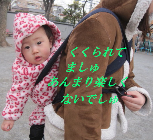 IMG_5240.jpg