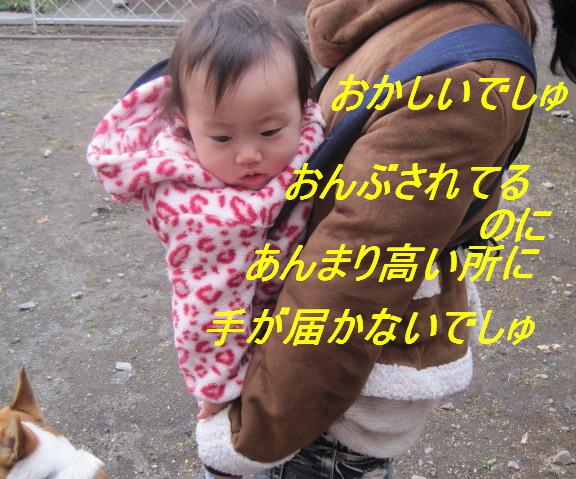 IMG_5245.jpg