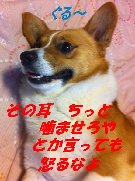 IMG_6650.jpg