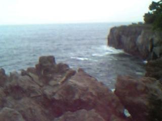 見えるは大島