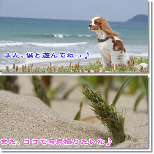 2011-04-24-77777777.jpg