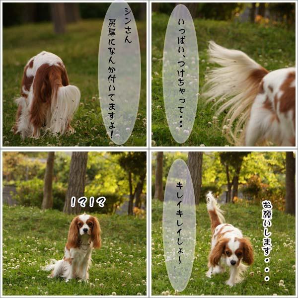 2011-05-08-1.jpg