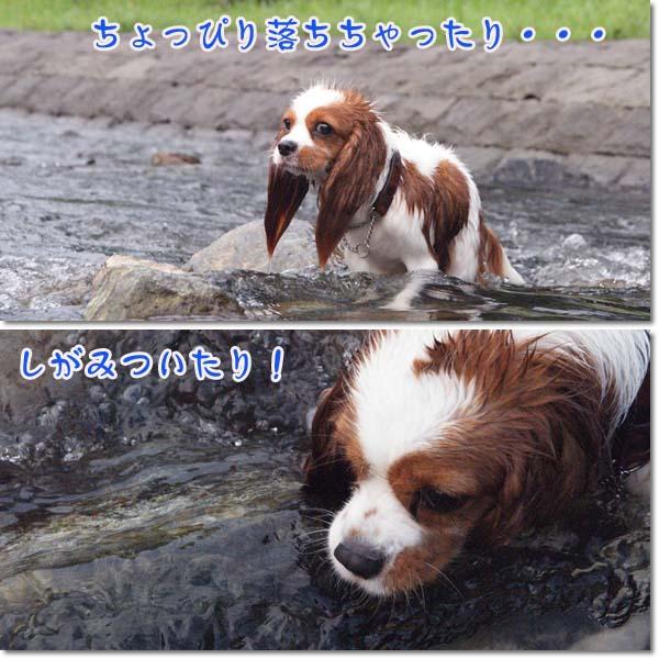 2011-07-12-3.jpg