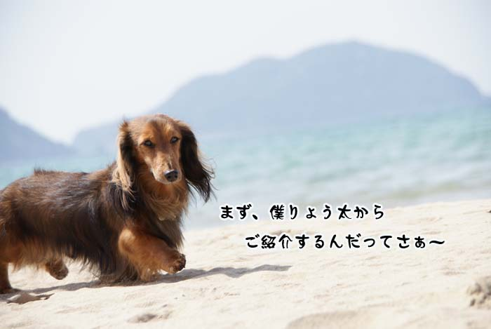 20110410_158.jpg
