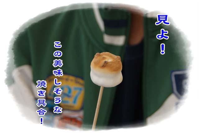 20110503_94.jpg