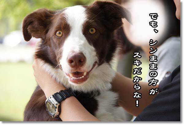 20110515_457.jpg