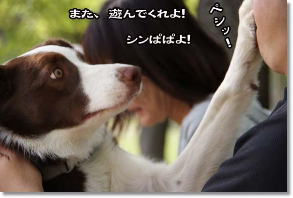 20110515_460.jpg